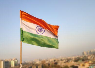 Импорт масличных в Индии вырос в 2,5 раза за последние 4 года