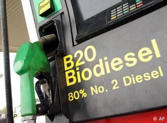 Малайзия намерена оспорить в ВТО решение Еврокомиссии об ограничении поставок биотоплива на основе пальмового масла