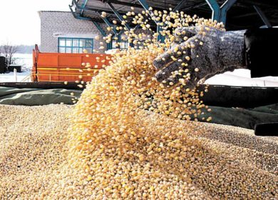 Cargill продал комбикормовый завод в  Ленобласти группе CBS Commodities