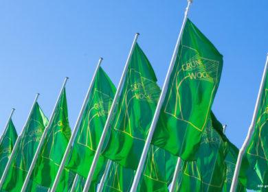 Бельгийская компания «АСВА» построит на Дону завод по переработке масличного  льна