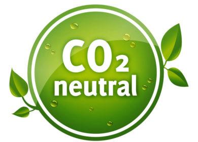 Carbon Free: британские производители изучают возможность выпуска рапсового масла нейтральной по углероду