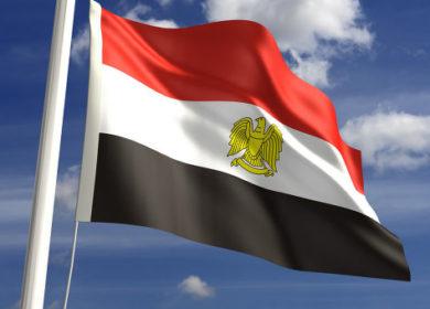 Египет отменил второй подряд тендер на импорт растительных масел