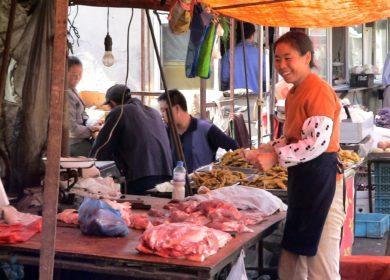 Оценка: Потребление говядины и свинины в Азии стремительно снижается, что приведет к падению спроса на соевый шрот