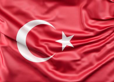 Турция спешно наращивает импорт подсолнечного масла в преддверии летнего повышения пошлин