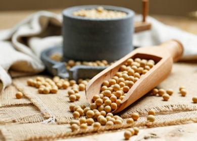 Китай открыл рынок для импорта двух сортов ГМО-сои