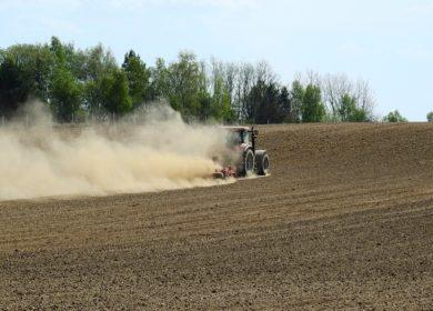 Кубань за пять лет увеличила производство сельхозпродукции на 25%