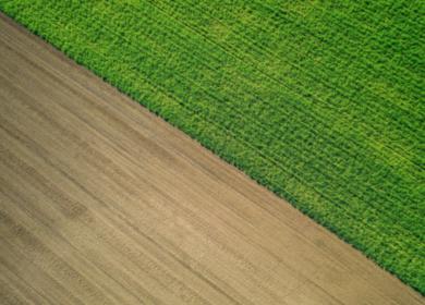 Крупнейшие российские агрохолдинги увеличивают мощности с помощи внедрения IT-технологий