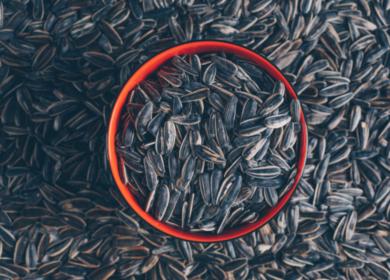 С 1 июля в России действует ограничительный порядок вывоза семян подсолнечника
