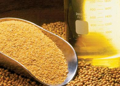 Мировой экспорт соевого и подсолнечного масла достиг отметки почти в 8 млн тонн