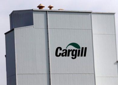 Российское подразделение Cargill в 2019 году снизило выручку незначительно — до 81,2 млрд рублей