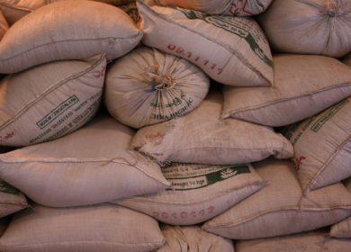 ОНФ направит предложения по развитию несырьевого экспорта в общенациональный план восстановления экономики