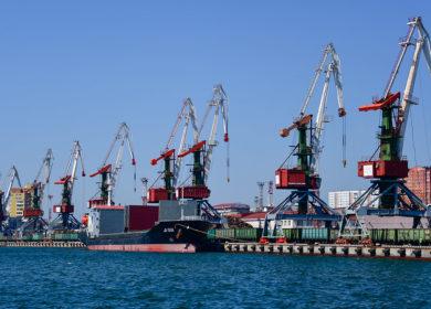 Порт «Ника-Тера» принял первую партию подсолнечного шрота