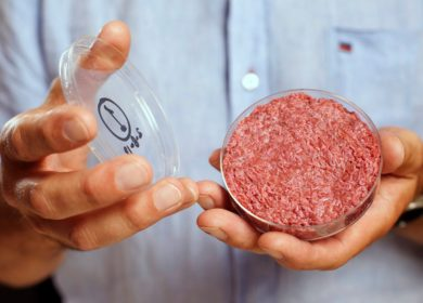 Производители искусственного мяса удвоили объем привлеченных инвестиций