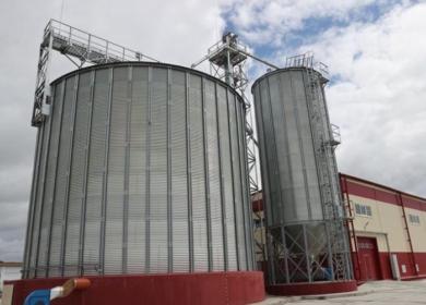 Завод по переработке масличных культур открылся в Витебской области