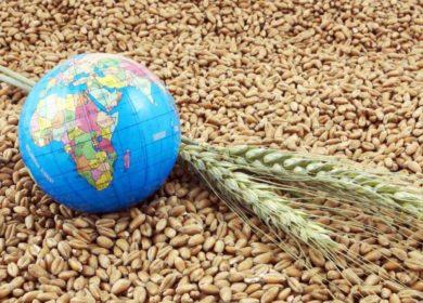 Нокдаун на мировом продрынке: Эксперты ФАО ожидают тотального падения цен