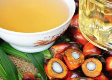 ЕС сокращает импорт пальмового масла в сезоне 2020/21