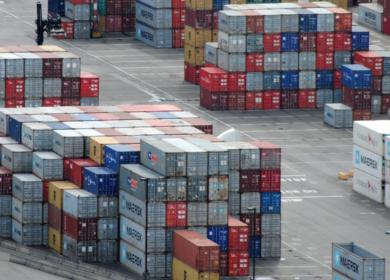 Поиск альтернативы: почему Китай наращивает поставки продукции из России