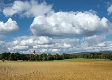 Госдума приняла поправки в закон об обеспечении плодородия с/х-земель