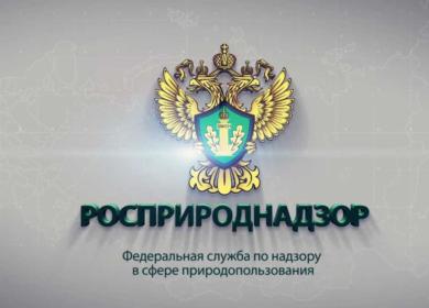 Росприроднадзор потребовал от Невинномысского завода подсолнечного масла 1,5 млн рублей