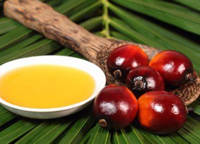 Индия импортировала рекордное количество пальмового масла за последние 10 месяцев