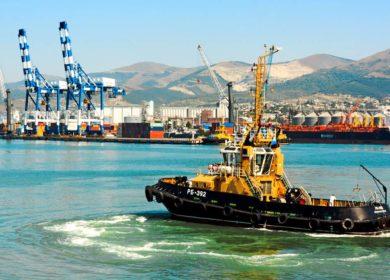 Погрузки подсолнечного масла за неделю в российских портах упали до 5 тыс. тонн