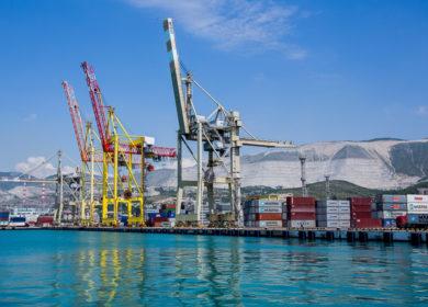Новороссийск отгрузил более 20 тыс. тонн подсолнечного масла из морского порта за прошедшую неделю