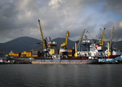 В августе объем отгрузок подсолнечного масла через отечественные порты снизился на 16%