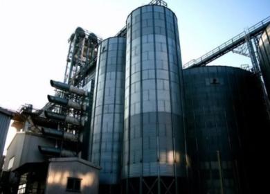 Армавирский маслопрессовый завод начал поставлять растительное масло в Туркменистан, Корею и Молдавию