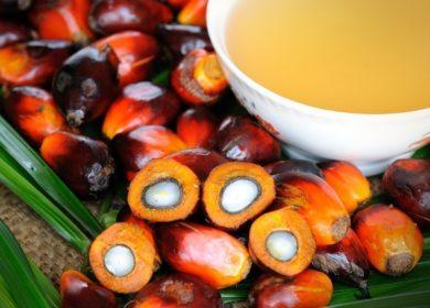 В июле запасы пальмового масла в Малайзии сократились на 10%