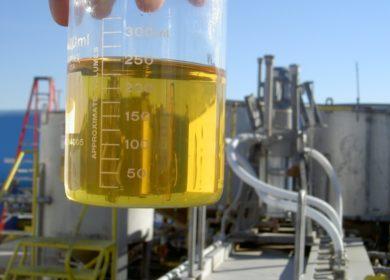 В Индонезии произвели партию биодизеля из пальмового масла