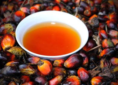 В августе в Малайзии сократился экспорт пальмового масла почти на 20%