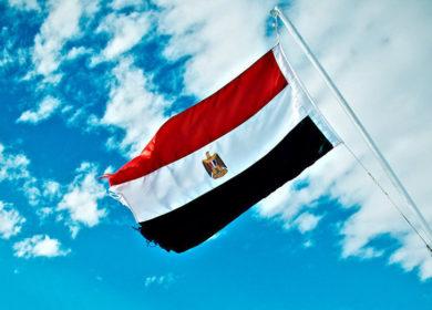 Египет объявил тендер на закупку растительных масел