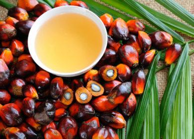 Импорт пальмового масла в Индии в июле достиг 10-месячного максимума