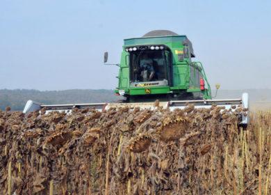 Михаил Мальцев: любое регулирование рынка выгодно, если позволяет развиваться и российским аграриям, и масложировой отрасли