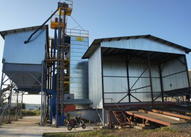 В Башкортостане возобновят производство элитных семян масличных культур за 147 млн рублей