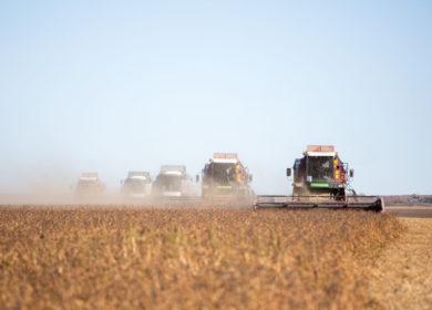 В Амурской области рассчитывают увеличить производство сои в два раза