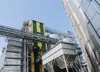 В Оренбурге построят дополнительные мощности для хранения подсолнечного масла