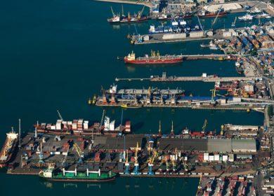 В июле Россия сократила экспорт масличных через порты более чем на 20%