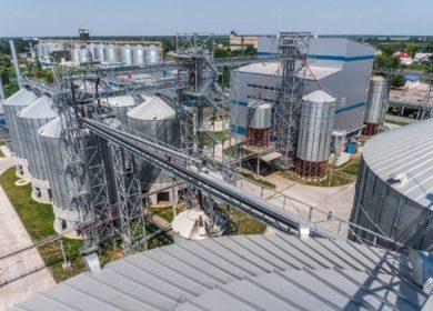 Узбекистану необходимо 1,5 млн тонн сои в год для полной загрузки всех мощностей