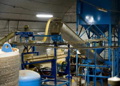 Лебяжский производитель рапсового масла вышел на мировые электронные торговые площадки