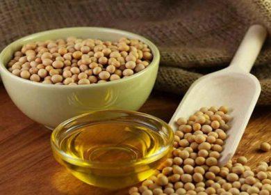 Россия увеличила отгрузки соевого масла более чем на 20%