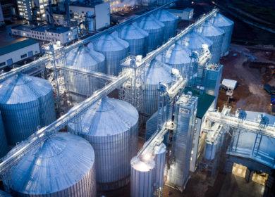 Башкирские маслоэкстракционные заводы начали прием нового урожая