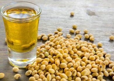 В Китае переработали первую партию сои из Приамурья для производства соевого масла