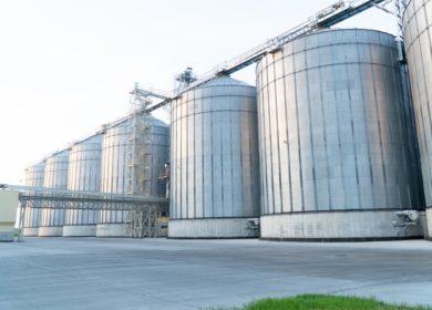 На комбикормовом заводе в Курской области началась приемка сои нового урожая