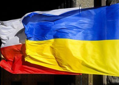 Основным экспортером украинского соевого масла в этом году стала Польша