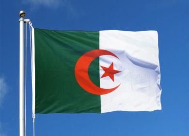 Государственное агентство Алжира проведет тендер на закупку соевого шрота