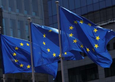 ЕС уменьшает отгрузки рапсового масла на фоне снижения активности со стороны Китая