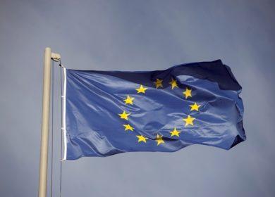 Поставки сои и подсолнечника увеличились в страны Евросоюза с начала сезона