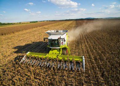 Шрот, масло: Россия нарастила агроэкспорт в Прибалтику