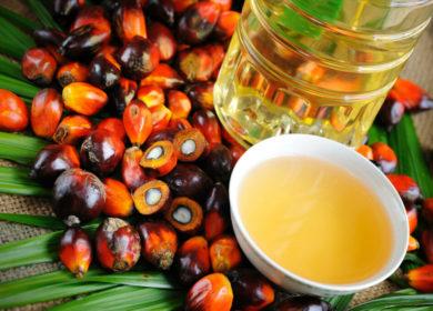 Во второй половине 2020 года цены на пальмовое масло заметно снизятся